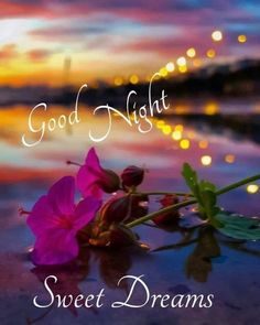Good Night Thoughts, Good Night Love Messages, Good Night Love Quotes, Good Night Love Images, Good Night Prayer, Good Night I Love You, Good Night Friends, Good Night Blessings, Good Night Greetings