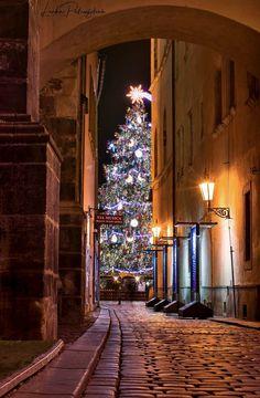 Prague Christmas In The City, Christmas Art, Beautiful Christmas, Mary Christmas, Xmas, Holidays Around The World, Places Around The World, Around The Worlds, Winter Holidays