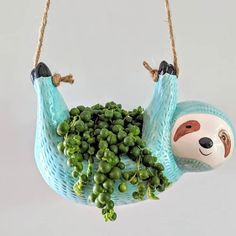 Succulent Diy Gifts Flower Pots Ideas For 2019 Hanging Succulents, Succulents Diy, Succulent Pots, Plant Pots, Ceramic Pottery, Ceramic Art, Clay Projects, Projects To Try, Decoration Plante