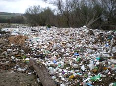 The plastic pollution...