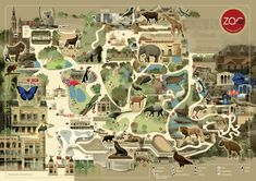 My animal drawings for the new Antwerp Zoo map. Map design and layout by Visual Maps Zoo Project, Mon Zoo, Zoo Map, Zoo Architecture, Wild Park, Visual Map, Campus Map, Tourist Map, Animal Habitats