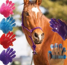 COOL new horse grooming tool from Chick's! Flexible Fingers Hand Jelly Curry   ChickSaddlery.com