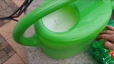 Best Indoor Garden Ideas for 2020 - Modern Hydroponic Gardening, Hydroponics, Garden Hose, Indoor Garden, Technology Gifts, Small Gardens, Growing Plants, Amazing Gardens, Sidewalk