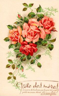 A bouquet of roses on a card for the mother's day