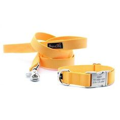 Sunflower Yellow Heavy Duty Webbing Collar – Flying Dog Collars So you're pushed aside Round looking for that perfect canine collar. In no way to cheap, or expensive. Ideally not whatever thing that doesn't look good. Shock Collar, Collar And Leash, Very Small Dogs, Large Dogs, Cute Dog Collars, Cat Collars, Flying Dog, Collor, Baby Dogs