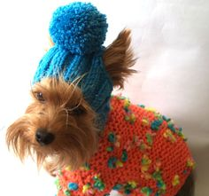 For dogs/pet hats/ Cap for girl dogs/winter dog hat/clothes for dogs/ dogs hat/hat for dog