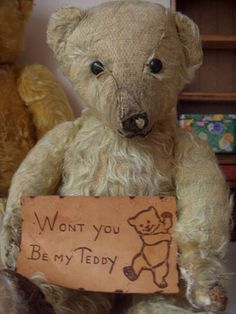 Sweet Old Teddy...with a sign.