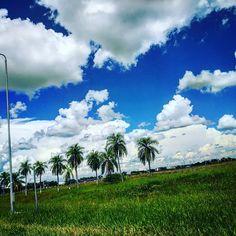 Santa Cruz #boliviantours Bolivia, Golf Courses, Clouds, Amazing, Outdoor, Santa Cruz, Outdoors, Outdoor Living, Garden