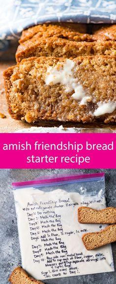 amish friendship bread starter recipe / sweet sourdough recipe / how to make sourdough / amish sourdough / sourdough recipe with sugar via @tastesoflizzyt
