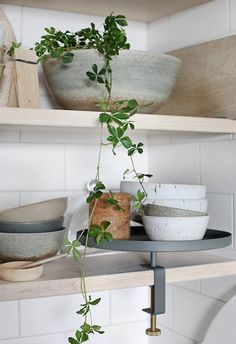 Still life with ceramics and plants. in Trendensers Kitchen, more images on the blog - Trendenser.se