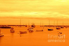 """""""#RyeHarbor NH"""" by Eunice Miller #LookTowardstheSky What caught my attention here was the way the orange sunset is reflected in the water in contrast to the quiet solitude of the pale gold sky."""