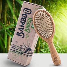 Amazon.com : Detangling Bamboo Brush in an Eco Friendly Box, Natural Brush for All Hair Types, Bamboo Bristles Massage Scalp, Order yours! : Beauty
