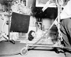 """Behind the scenes of Bringing Up Baby (1938) """