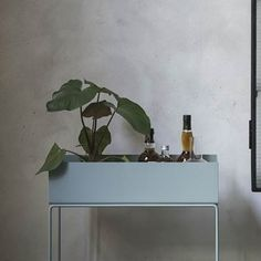 The rectangular plant box from ferm LIVING has an elegant, timeless aesthetic to suit any home. Mini Bars, Temporary Storage, Fleurs Diy, Metal Plant Stand, Plant Box, Cosy Corner, Wall Boxes, Diy Décoration, Green Plants