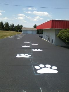 Take a walk on the wildside to McClung's Animal Hospital :)