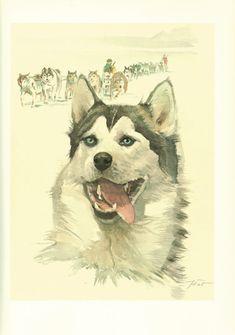 SIBERIAN HUSKY DOG ART PRINT POSTER Breed Funny Portrait Owner Gift Present
