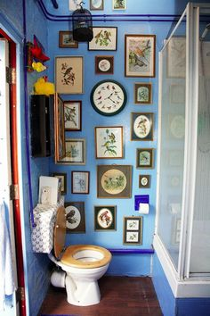 Bird Bathroom. Bah ha ha!!! They have the same bird clock I do in the bathroom. I don't think I would do this to my bathroom, just think it's funny.