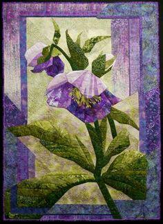 Purple Hellabore by Judy Leslie