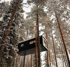 Die verrücktesten Baumhäuser der Welt  http://www.styroporhaus.org/artikel/baumhaeuser.html