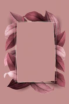 Phone Wallpaper Images, Framed Wallpaper, Flower Background Wallpaper, Cute Wallpaper Backgrounds, Flower Backgrounds, Pretty Wallpapers, Aesthetic Iphone Wallpaper, Frame Background, Iphone Backgrounds