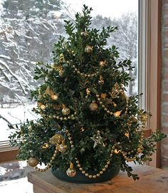 Tabletop Christmas Trees | Tabletop boxwood trees are very easy to build, look terrific, and make ...