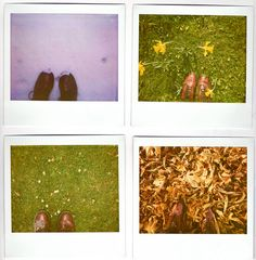 seasons via polaroid ~