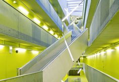 Desso carpet at Linz University Johannes Kepler, Custom Carpet, University, Stairs, Architecture, Projects, Design, Color, Linz