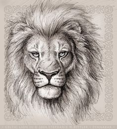 Lion Head Drawings | celtic lion iii lions are so relaxing and soothing to draw this is not ...