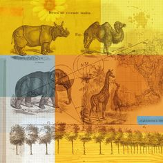 VINTAGE ANIMALS poster print // 12.2 x 12.2 door SchildertuinDesign