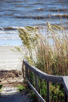 Harbor Island, a barrier island in the Lowcountry of South Carolina