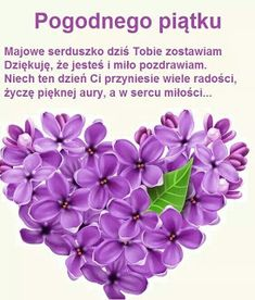 Irene, Plants, Friday, Humor, Pictures, Polish, Humour, Funny Photos, Plant