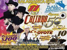 Calibre 50, El Coyote y Su Banda Tierra Santa, La Estructura