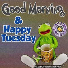 Tuesday Quotes Good Morning, Good Morning Happy, Good Morning Greetings, Happy Tuesday Quotes, Happy Tuesday Pictures, Good Morning Funny Pictures, Good Morning Images, Days Of A Week, Monday Humor Quotes