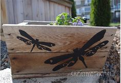 "Creative ""Try""als: Stencil a Wood Planter"