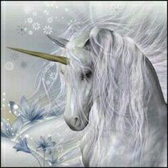 Winter unicorns