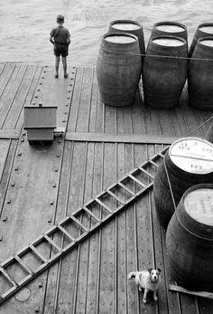 The River Rhine, Germany, 1965. Leonard Freed.