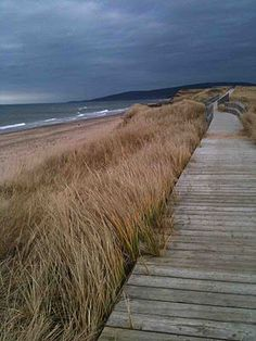 Cape Breton Island, Nova Scotia I wish I was on this path and I wish it would never end :)