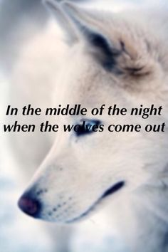 Made In The A.M. ~ One Direction Wolves.
