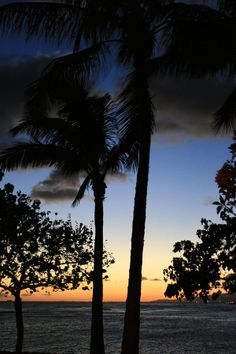 ✮ Beautiful sunset from Ala Moana State Park in Oahu, Hawaii