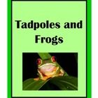 This is a terrific resource if you are studying the life cycle of frogs.  This download includes a 14 page book on the life cycle of a frog. The bo...