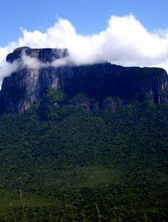 Cerro Autana, Amazonas verde, Venezuela