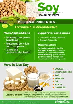 HerbaZest: Discover the many benefits of Soy! Soybeans are full of protein calcium B-group vitamins and fatty acids. Furthermore they contain phytoestrogens which can help women with imbalanced levels of reproductive hormones. Brain Healthy Foods, Brain Food, Healthy Protein, Stay Healthy, Matcha Benefits, Coconut Health Benefits, Nutrition Tips, Health And Nutrition, Health Tips