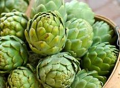 The therapeutic effect of artichoke