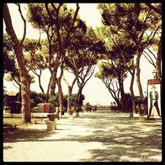 Roma-Giardino degli aranci