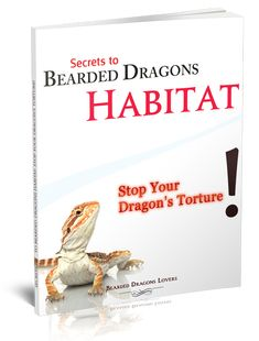 For Bearded Dragon Owners! Over 92% of Bearded Dragon owners torture their pets. Owners are unintentionally making mistakes that are slowly killing their much-loved pets! If you own a bearded dragon, have you considered that you may be making mistakes with their care that may actually be torturing or killing your beloved pet? This is an urgent wakeup call to you and any other Bearded Dragon fans you know. Have you seen any of the following signs? You could have a problem that may be serious…