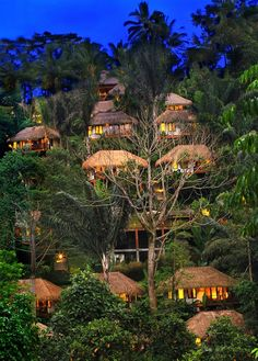 Discover a luxury jungle experience in Bali, Indonesia offered by Nandini Jungle Resort and Spa. It is the best luxury jungle resort in Indonesia. Bali Resort, Resort Villa, Resort Spa, Ubud Hotels, Jungle Resort, Voyage Bali, Templer, Jungles, Mountain Resort