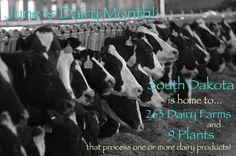 Celebrate June Dairy Month!