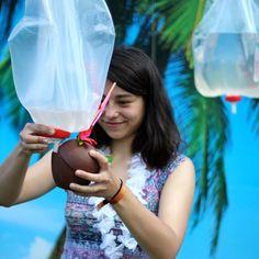 Summer festivity: Deventer op stelten, coconut anyone?