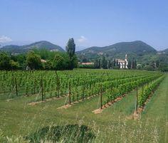 Beautiful Italy...near Montebelluna