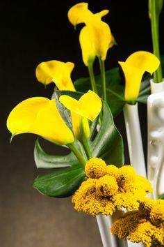 Aprilli Spiral Vase Flower Vases, Flowers, Digital Fabrication, Floral Arrangements, Spiral, Create, Plants, Design, Bud Vases